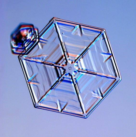 https://i0.wp.com/www.its.caltech.edu/~atomic/snowcrystals/class/w050121a062.jpg
