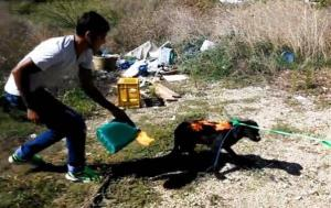 Greek Children set fire to a dog for fun - Animal Cruelty in Greece at its worst