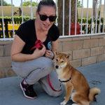 dani-150x150 How Do I Help My Shy or Fearful Pup?