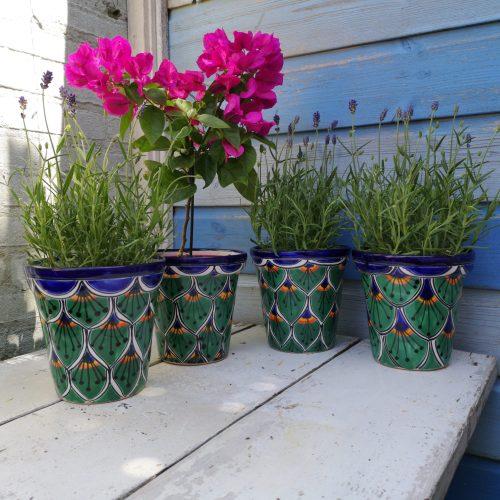 fairtrade overpot groen mexico