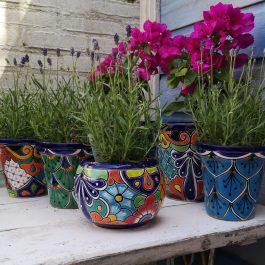 Fairtrade: Handgemaakte bloempotten uit Mexico
