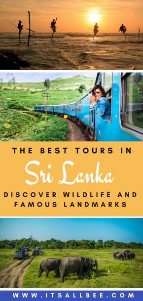The Best Budget Tours In Sri Lanka | yala national park, nuwara eliya, arugam bay, sigiriya, 2 weeks in sri lanka budget and budget for sri lanka trip