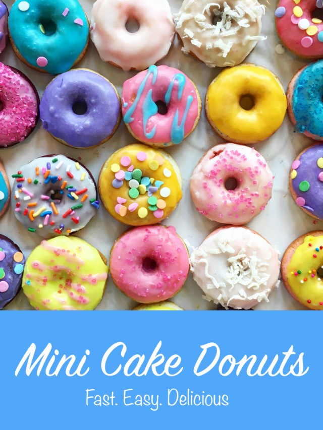 Easy Mini Cake Donut Recipe | It's All Chic To Me
