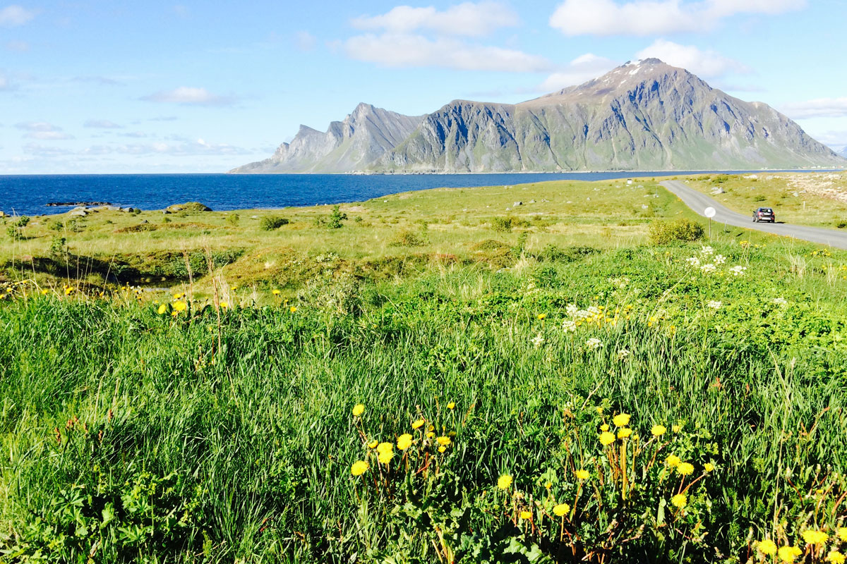 Lofoten Norway on the Road Summer 2015