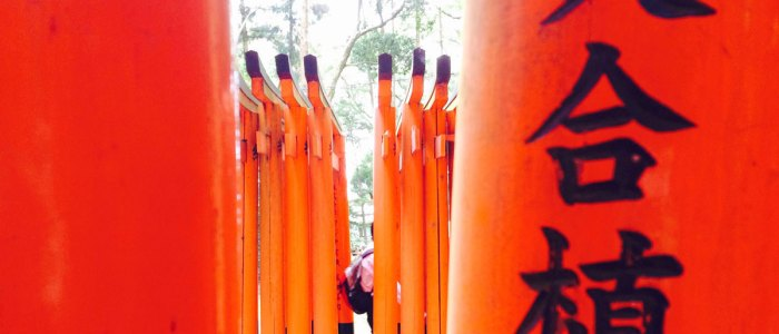 On the temple trail in Kyoto, seeing the Inari Temple and paying respects to the Fox Goddess.