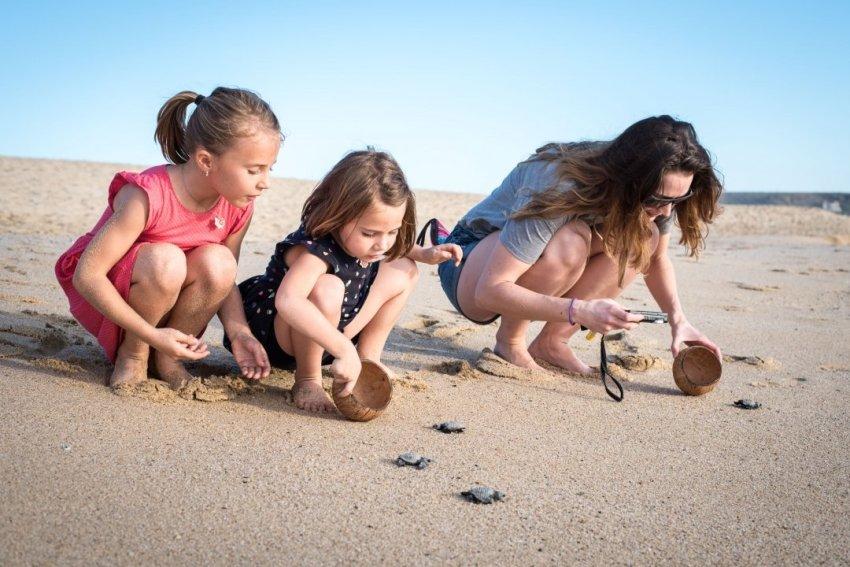 Releasing turtles with Aunty Nene.