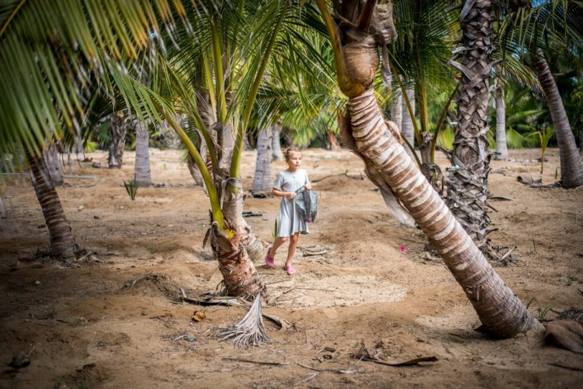 Easter egg hunting in the palm trees