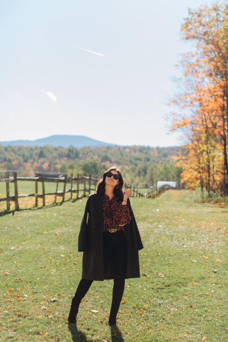 Vermont Travel Guide During Fall, Field Guide Hotel