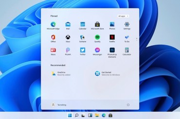 Windowsfx 11, a whole Linux flavored like Windows 11 and without the need for TPM