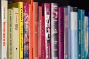 Children's Book Promotional Opportunities