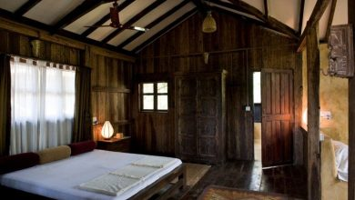 Photo of Mud Huts to Tree Houses – Goa's Eco-Resorts