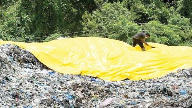 Photo of Waste management? Tonnes of Garbage