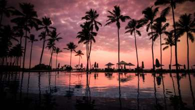 Photo of Attractive places like Goa