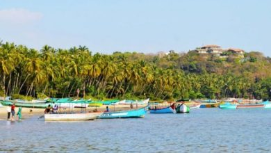 Photo of Nerul is one of Goa's quaint little villages lining the Mandovi river