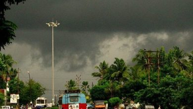 south-west monsoons