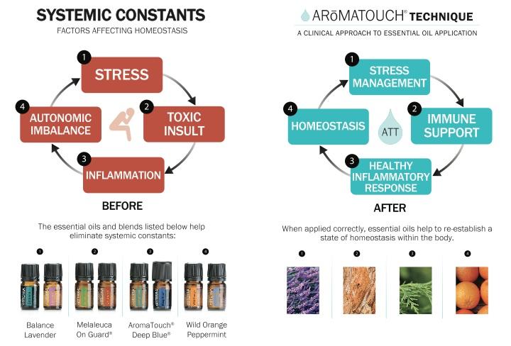 Treatments – Massage