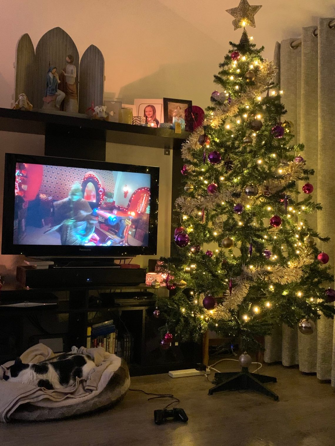 picture shows Christmas tree