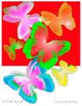 Butterflies, Greeting Card