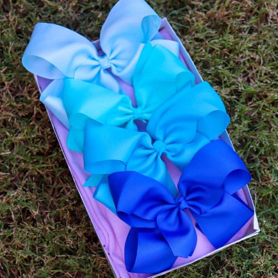 blue bow box, bow box, monthly bow box, bow box collection, blue bows