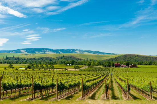 Walla Walla Valley- Washington