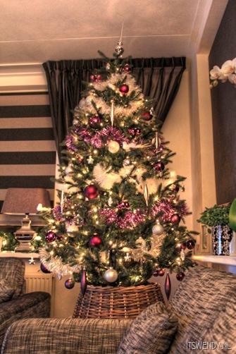 kerstboom 2011