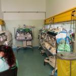 Prima camera senzoriala de post-terapie neonatala din Romania este functionala