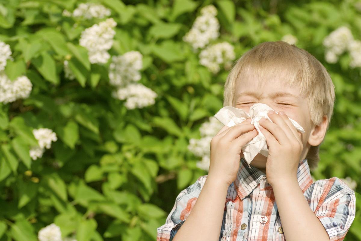 Alergiile la copii: Manifestari si tratamente