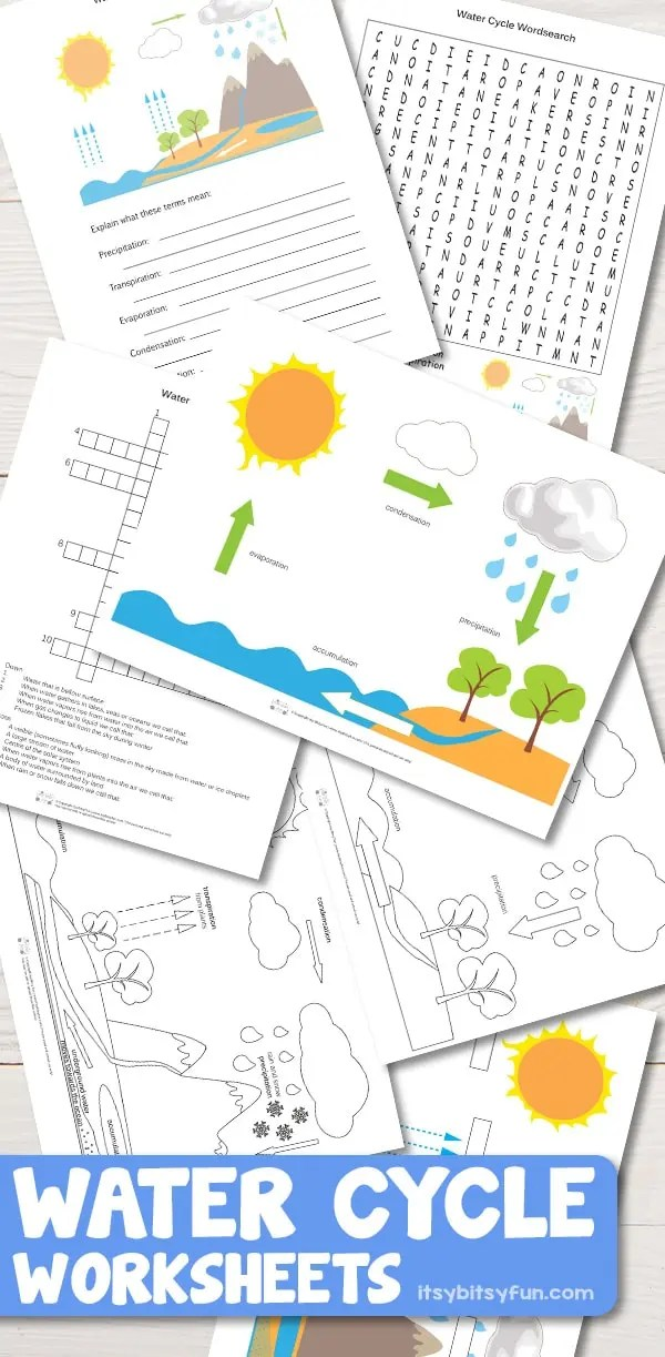 water cycle diagram with questions ezgo golf cart battery wiring free printable worksheets diagrams itsy bitsy fun for kids kindergartenworksheets worksheetsforkids freeprintables
