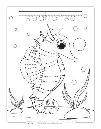 Seahorse tracing worksheet.