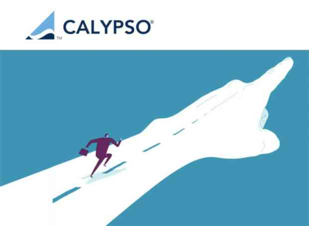 calypso-software-itusers