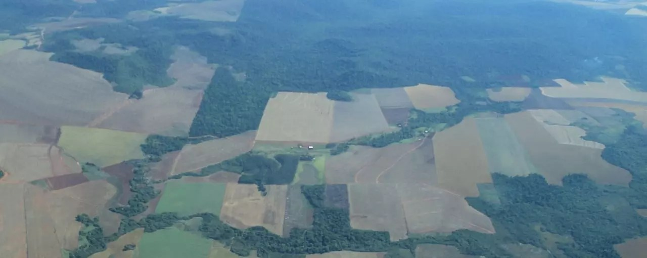 This subject is usually discussed when looking at the effects it has on the rainforest biome, but it can also occur anywhere in the world when a forest is artificially transformed for another purpose. Tackling Uncontrolled Deforestation In Paraguay By Improving Landscape Planning Iucn Nl