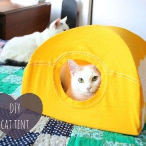 DIY : เต๊นท์แมวเหมียว 23 - Tent