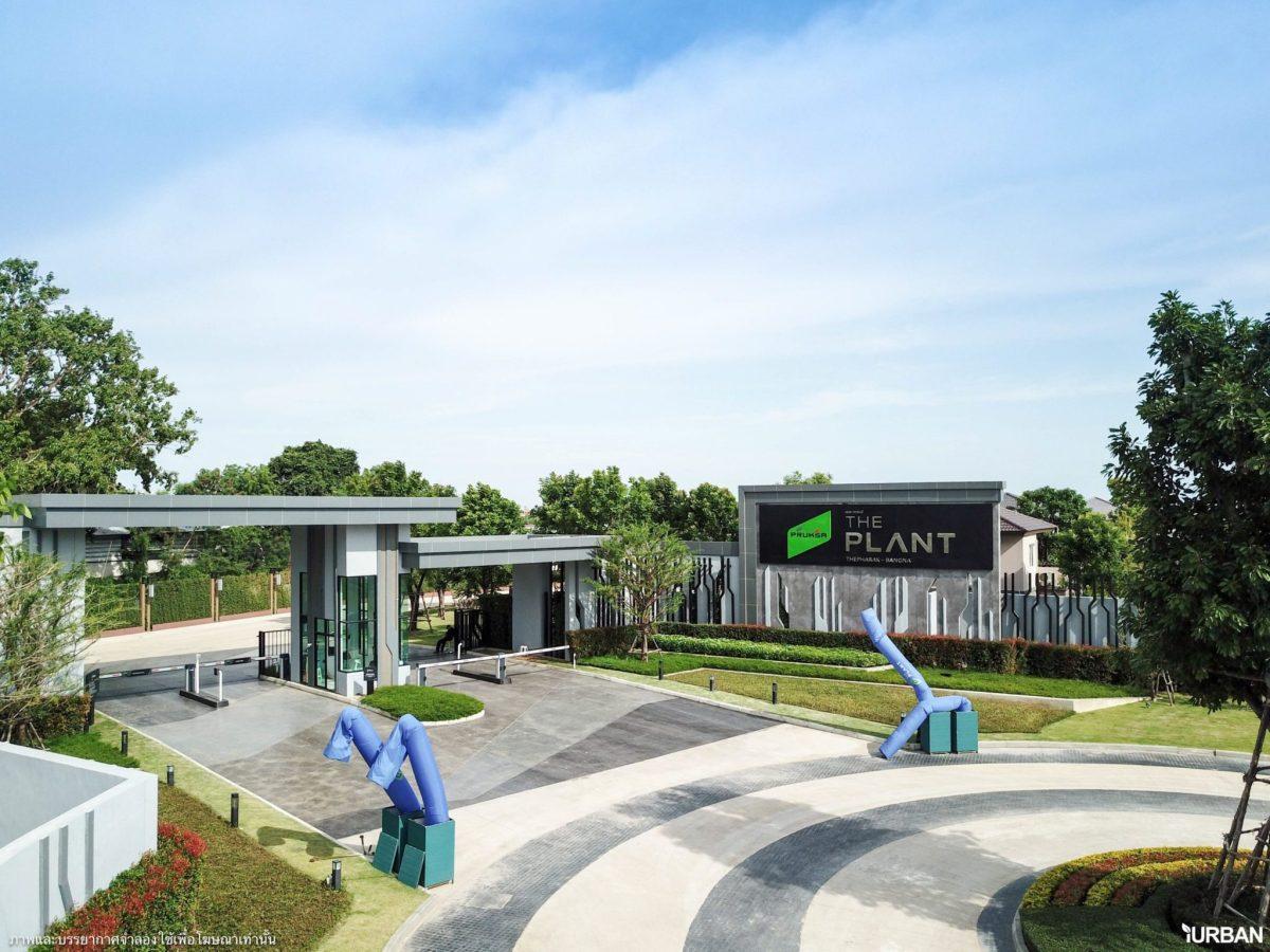 The Plant เทพารักษ์-บางนา ชมบ้านตัวอย่างและรีวิวโครงการ บ้านเดี่ยวดีไซน์สวย ทำเลดีใกล้ห้างและตลาด เริ่ม 3.8 ล้าน 14 - Megabangna (เมกาบางนา)