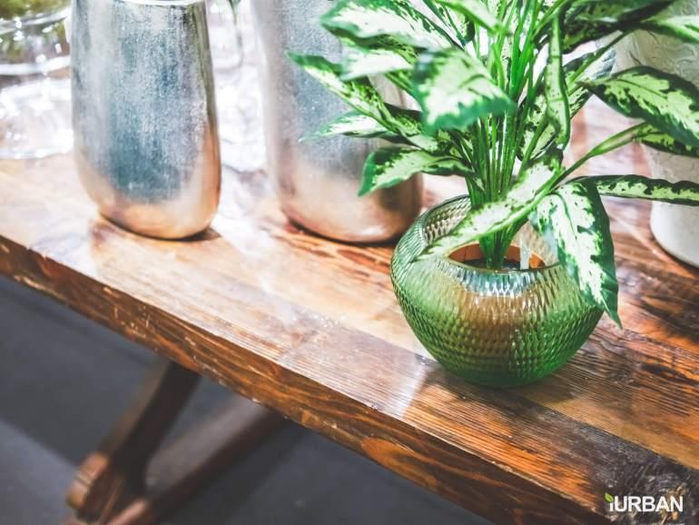 8 วิธีตกแต่งบ้านให้ดูธรรมชาติแบบ Organic Living 35 - decor
