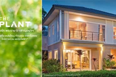 รีวิว THE PLANT RESORT พระราม 5 - กาญจนาภิเษก บ้านเดี่ยวย่านบางใหญ่ ใกล้ Central Westgate 11 - CentralPlaza Westgate