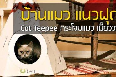 Cat Teepee บ้านน้องแมว แนวฝุดๆ เมี๊ยววว~ 16 - LIVING