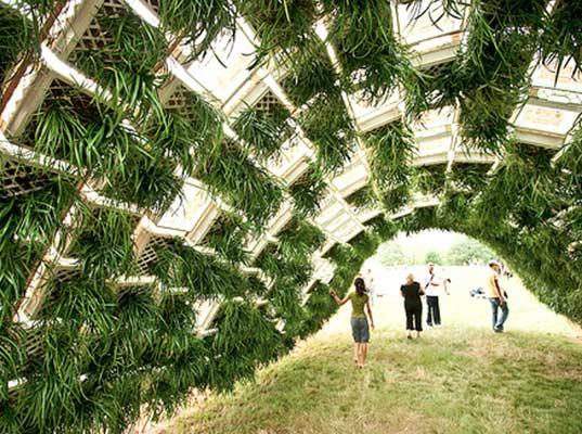 ไอเดียลดโลกร้อน ปลูกสวนแนวตั้งจากลังพลาสติก 13 - Green Wall
