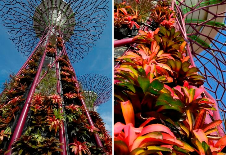 Garden by the bay..สวนใหญ่ทีสุดที่สิงคโปร์ทุ่มทุนสร้าง 13 -
