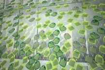 Solar-Ivy-Update-1b