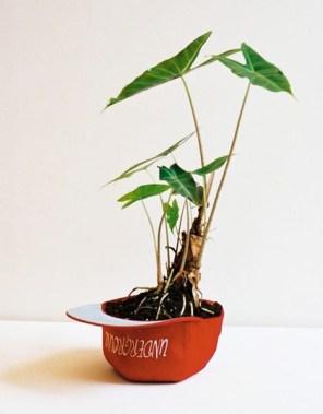 planter-hat-pot-reuse
