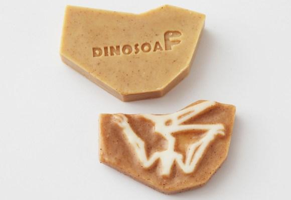 Dinosoap 16 -