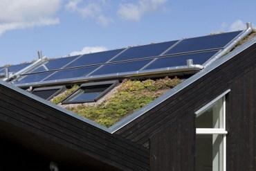 Green roof หลังคาพลังงานแสงอาทิตย์ ปลูกต้นไม้ได้อีก 13 - Solar cell