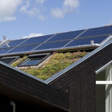 Green roof หลังคาพลังงานแสงอาทิตย์ ปลูกต้นไม้ได้อีก 14 - Solar cell