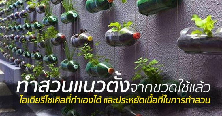 สวนแนวตั้ง ทำเองก็ได้ ~ สวนแขวนจากขวดพลาสติกใช้แล้ว 13 - 100 Share+