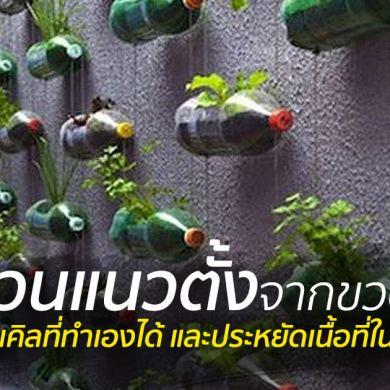 สวนแนวตั้ง ทำเองก็ได้ ~ สวนแขวนจากขวดพลาสติกใช้แล้ว 18 - 100 Share+