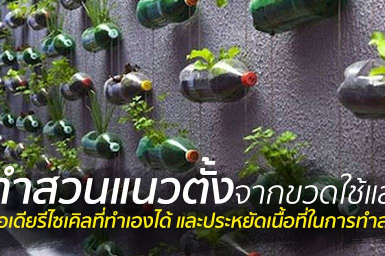 สวนแนวตั้ง ทำเองก็ได้ ~ สวนแขวนจากขวดพลาสติกใช้แล้ว 23 - 100 Share+
