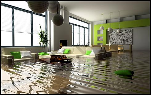 การทำความสะอาดหลังน้ำลดด้วยตัวเอง Clean House After Flooding  14 -