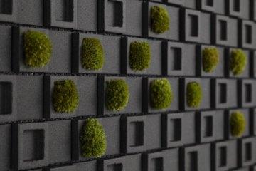 Dent Cube: Create a Unique Wall ไอเดียการตกแต่งแนวกำแพง 20 - interior design