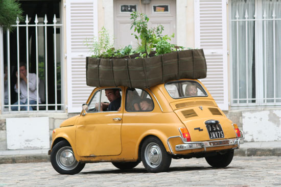 Bag for plants 25 - ตกแต่งบ้าน
