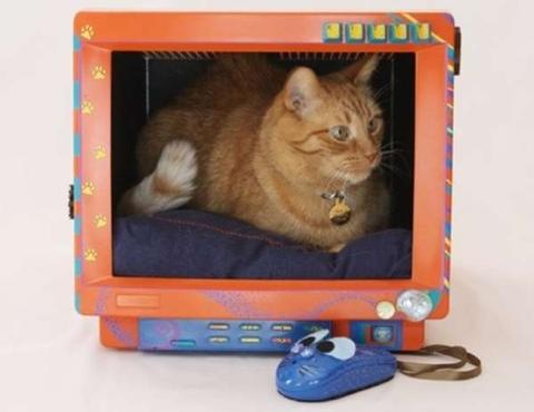 25550119 192507 Cat bed...เตียงน้องเหมียวจากจอคอมพิวเตอร์เก่า(รุ่นโบราณ)